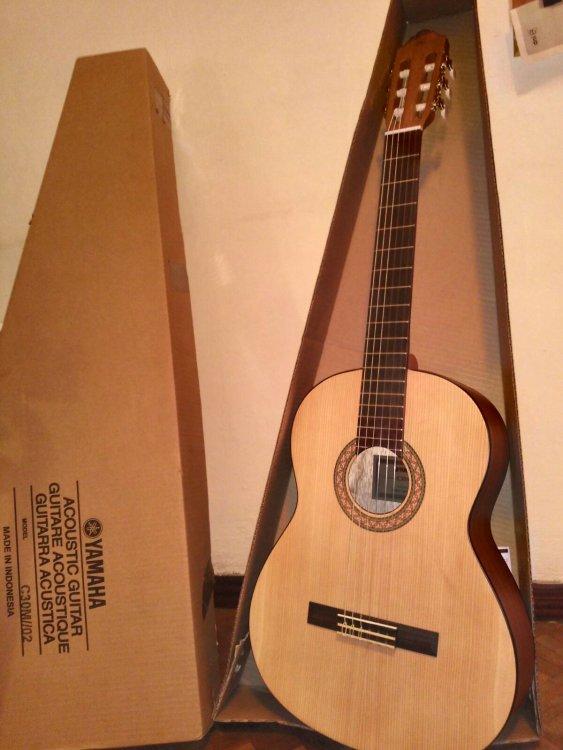Guitarra 3.jpg